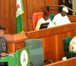 jonathan at the national assembly
